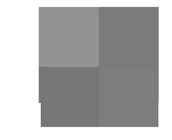 iconita logo 4